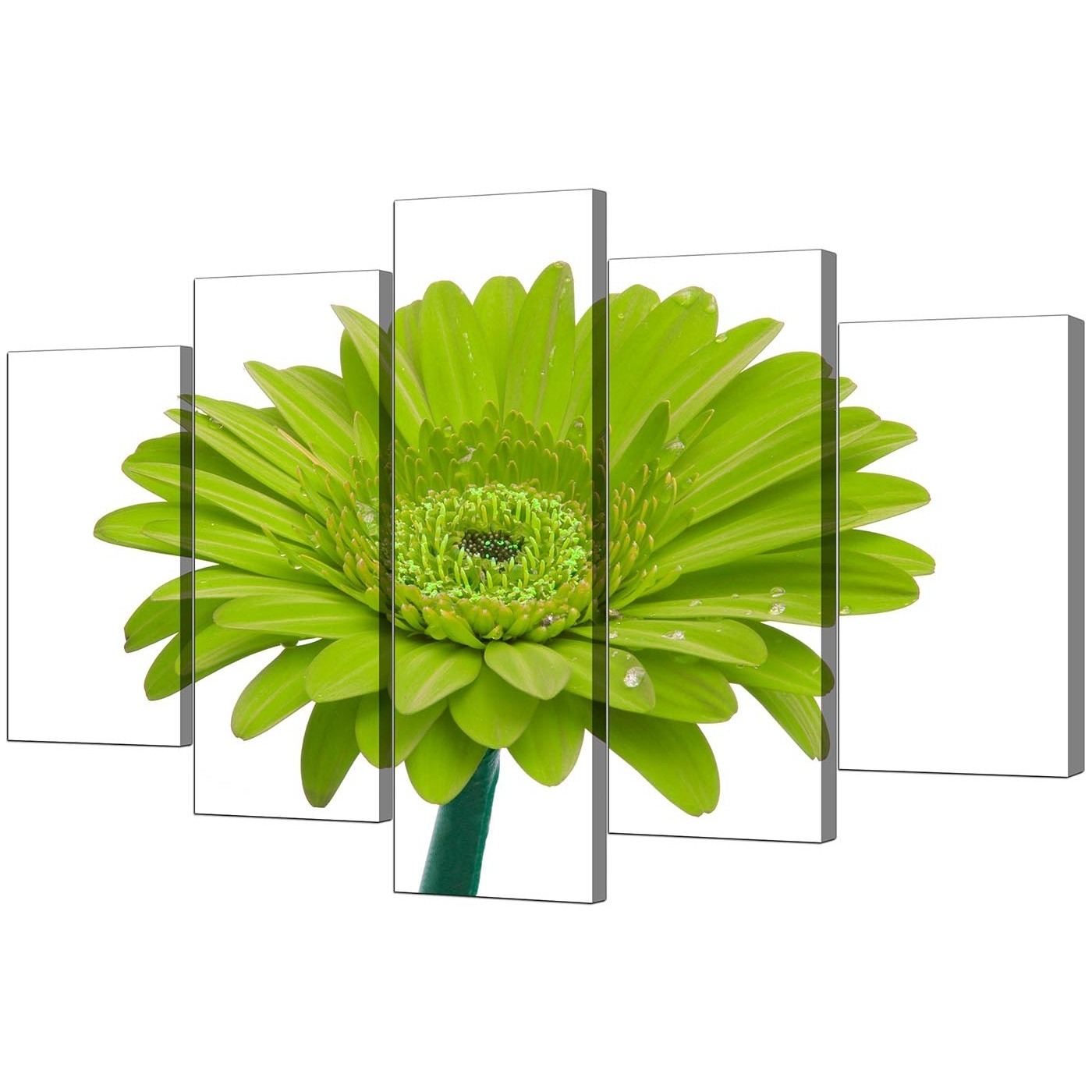 2017 Extra Large Flower Canvas Wall Art Five Part In Lime Green With Green Canvas Wall Art (View 1 of 15)