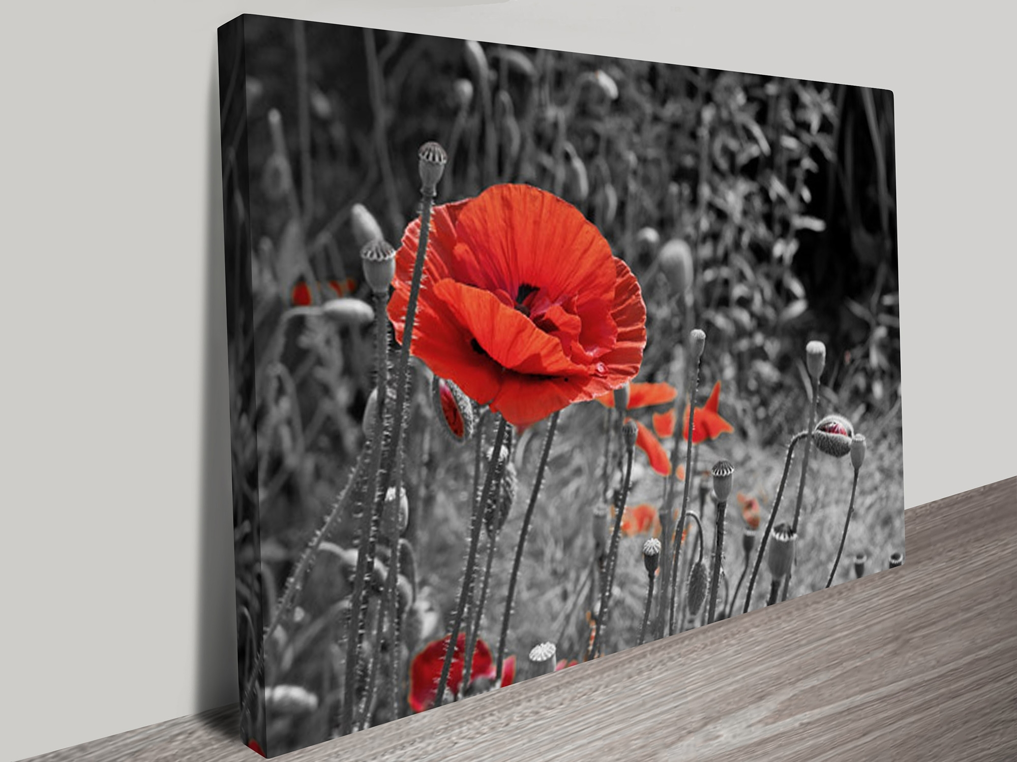 2018 Black And White Wall Art With Red For Floral Wall Art & Macro Photos Flowers And Fields Canvas Prints (View 14 of 15)
