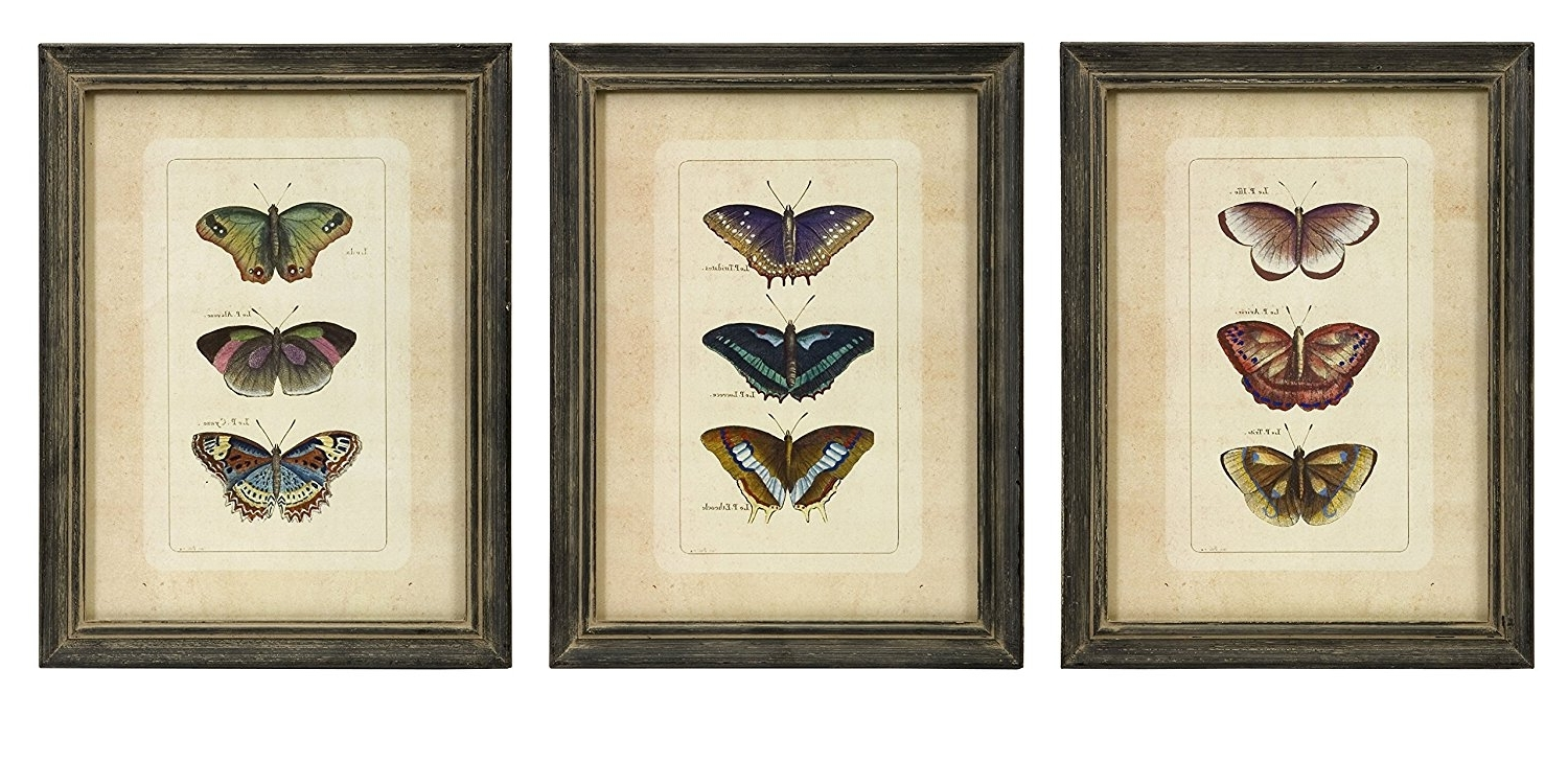 2018 Cheap Wall Art Sets For Amazon: Imax 27304 3 Butterfly Collection Wall Art, Set Of 3 (Gallery 12 of 15)