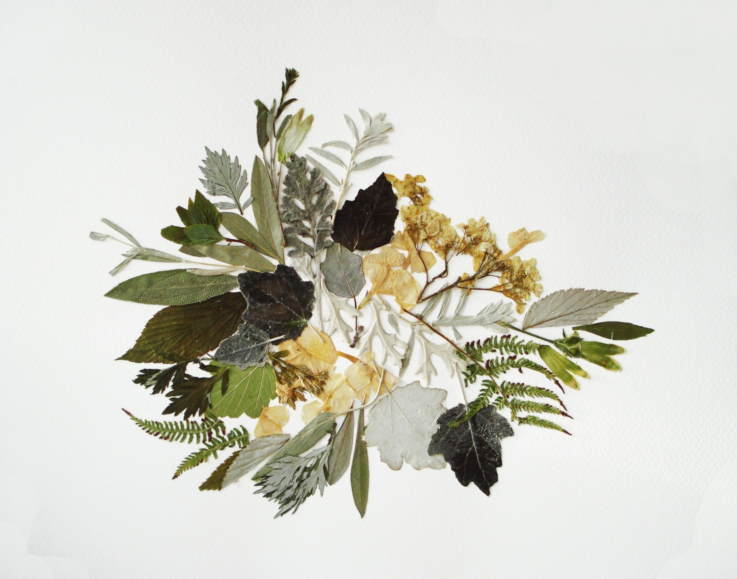 2018 Floral & Plant Wall Art In Floral Art Botanical Art Works Dried Flower Decor Unique Art (View 1 of 15)