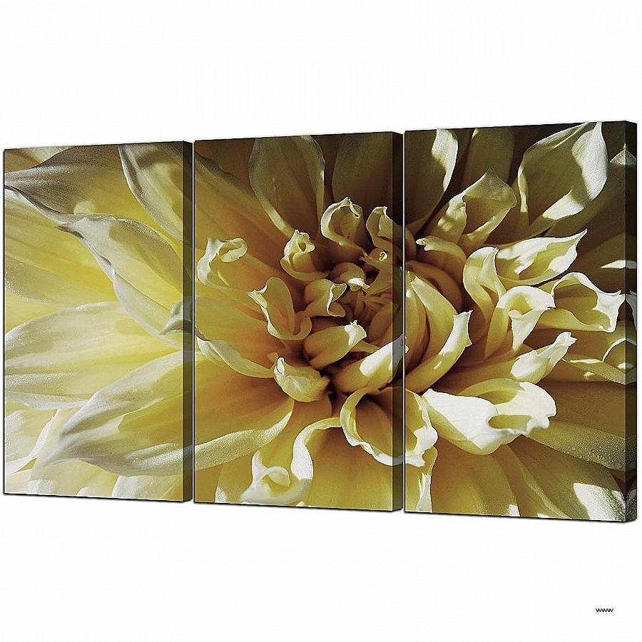 3 Piece Canvas Wall Art Sets Unique Flower Canvas Art Set Of 3 For Pertaining To Well Liked Wall Art Sets For Living Room (View 13 of 15)