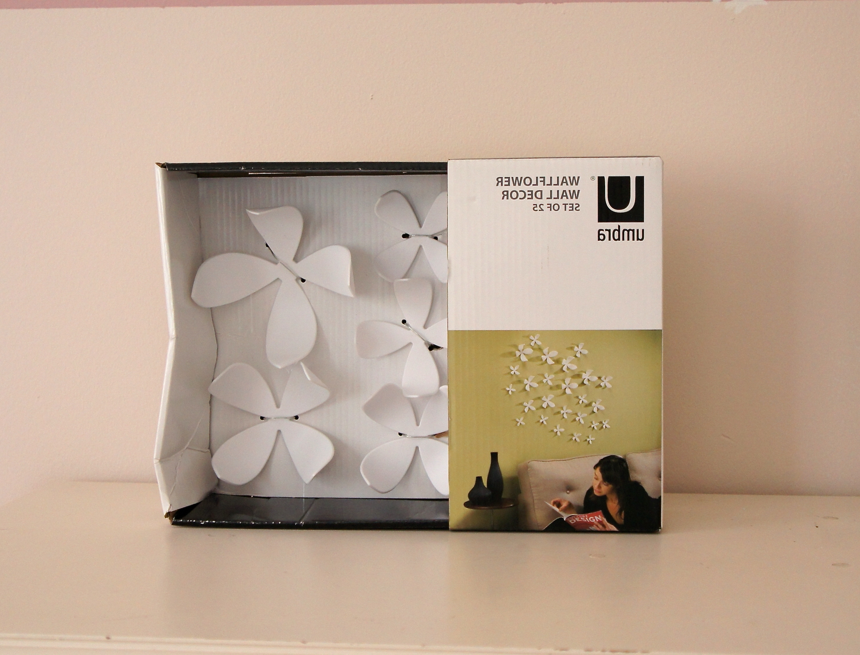 3d Wall Flowers – Flowers Ideas For Review Inside Newest Umbra 3d Flower Wall Art (View 13 of 15)