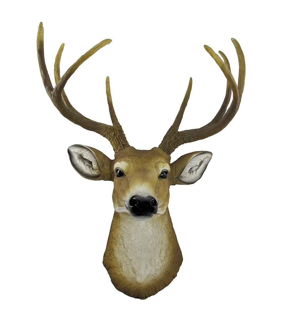 Amazon: 8 Point Buck Deer Head Bust Wall Hanging: Home & Kitchen Pertaining To Most Current Resin Animal Heads Wall Art (View 4 of 15)