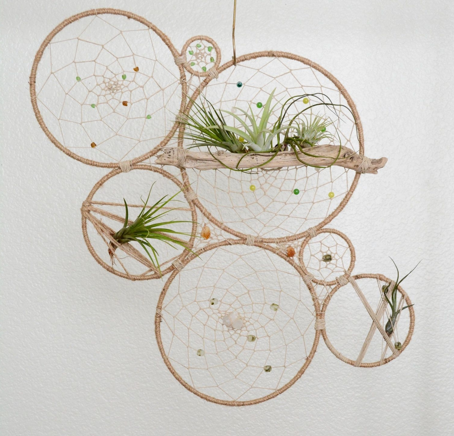 Best And Newest Air Plant Wall Art With Regard To Round Air Plant Holder – Natural Tillandsia Dreamcatcher Wall (View 8 of 15)