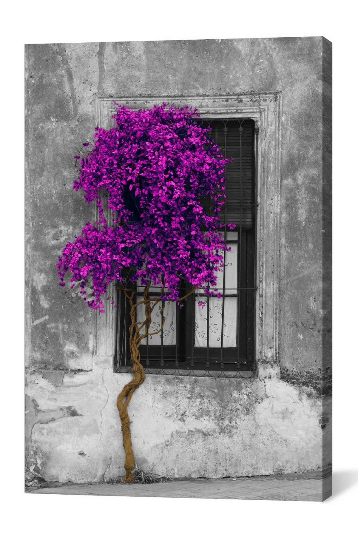 Best And Newest Tree In Front Of Window Purple Pop Color Poppanoramic Images For Grape Colour Wall Art (View 10 of 15)