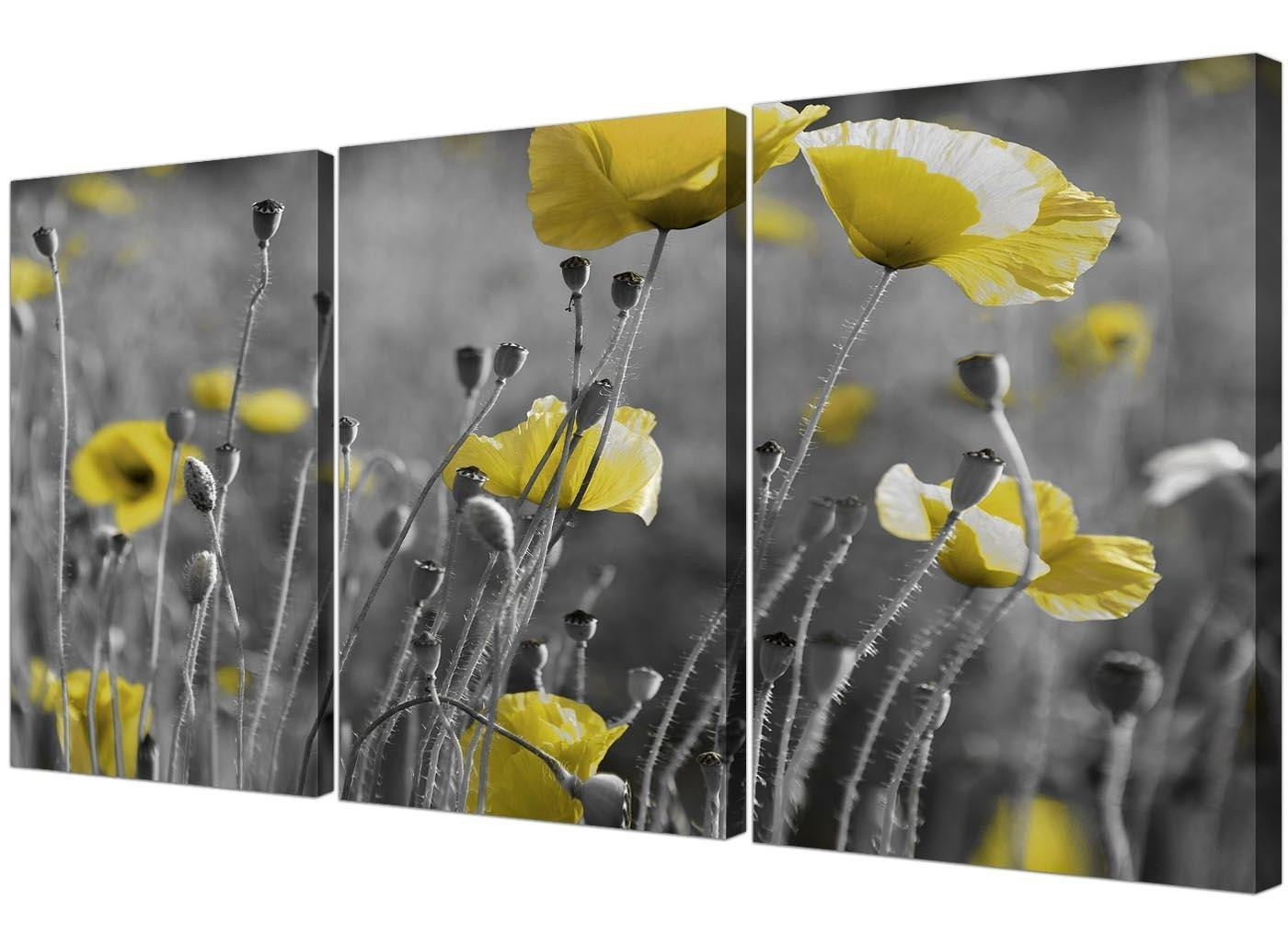 Black And White Canvas With Grey And Yellow Poppies Wall Art Intended For Well Liked Yellow And Grey Wall Art (View 11 of 15)