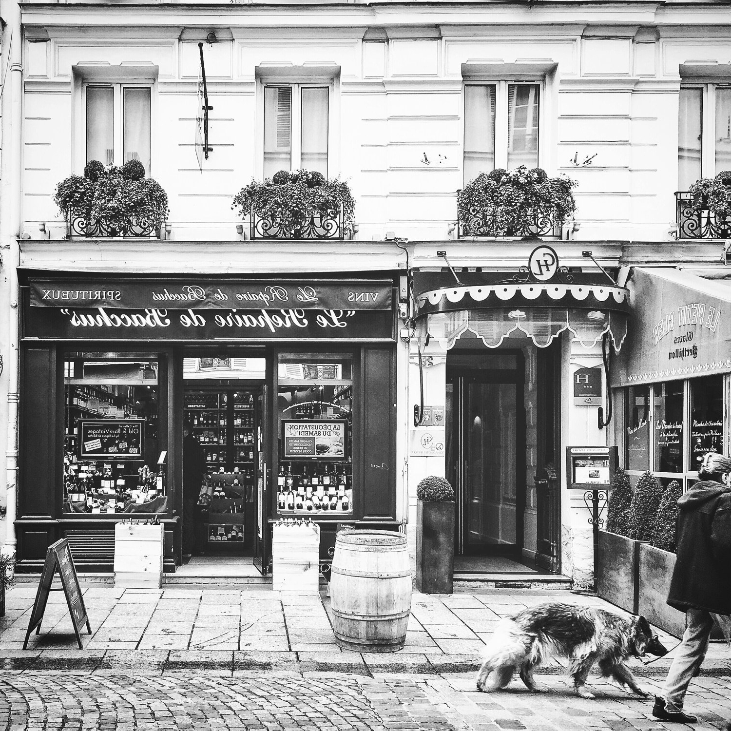 Black And White Paris Wall Art Throughout Well Liked Paris Streets, Bonneroutephotos, Paris Photography, Rue Cler (View 3 of 15)