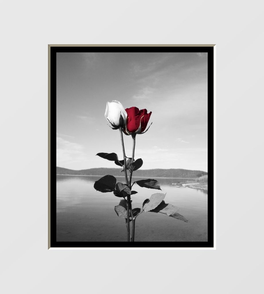 Black And White Wall Art With Red Intended For Trendy Black, White & Red Wall Decor (View 11 of 15)