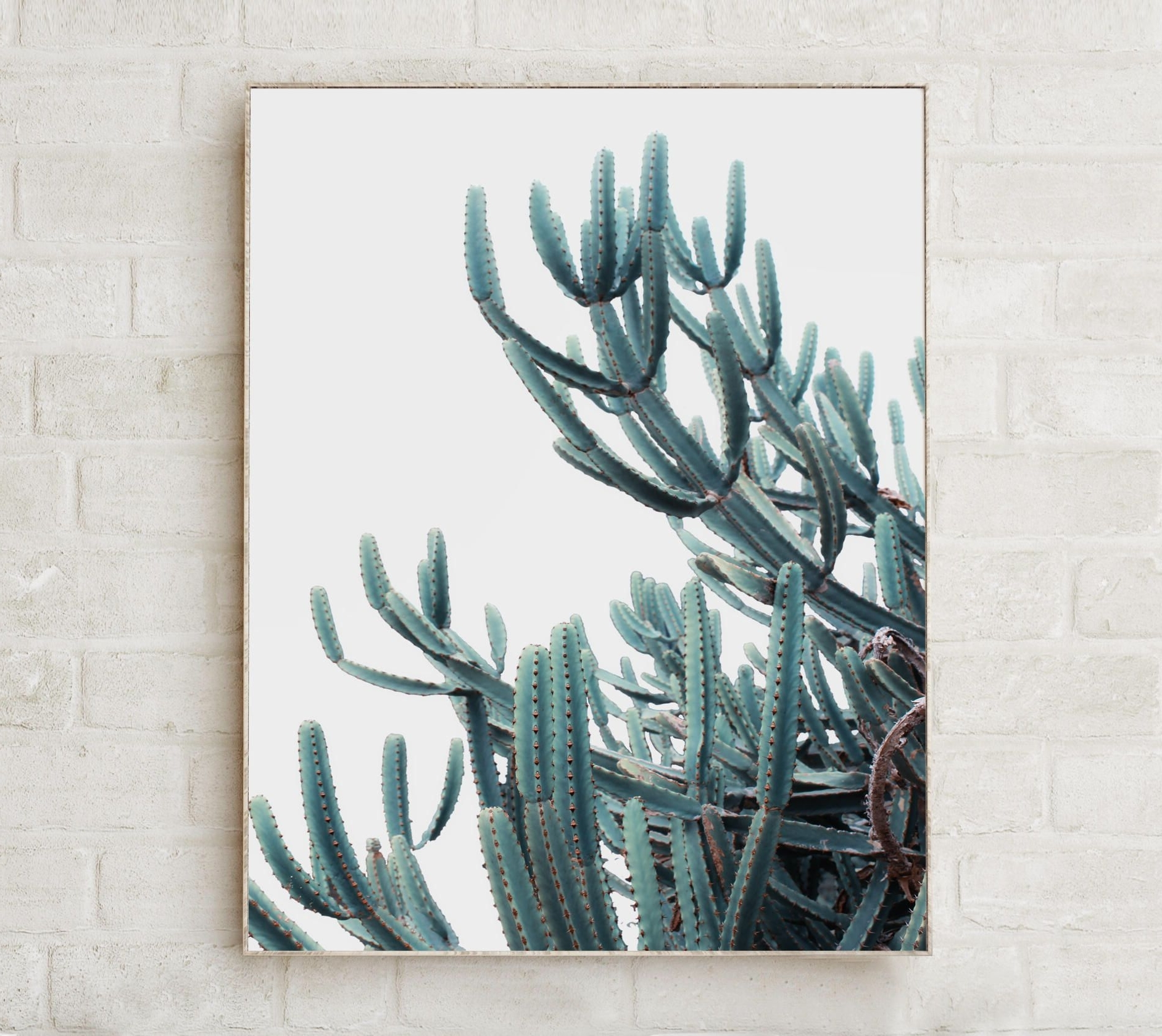 Botanical Prints Etsy Throughout Well Liked Botanical Print Cactus Print Wall Art Prints Cactus Decor Nature (View 4 of 15)