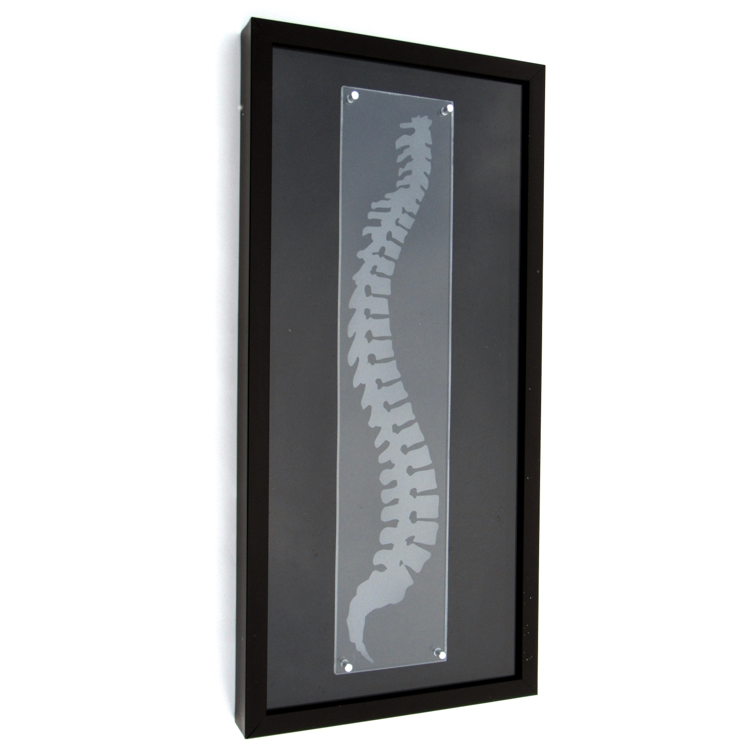 Chiropractic Art – Spine Shadowbox – Chiropracticart Within Current Chiropractic Wall Art (View 7 of 15)