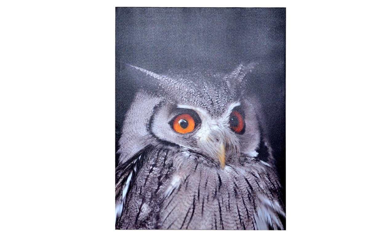Cleverfurn Owl Framed Wall Art On Wood & Reviews (View 2 of 15)