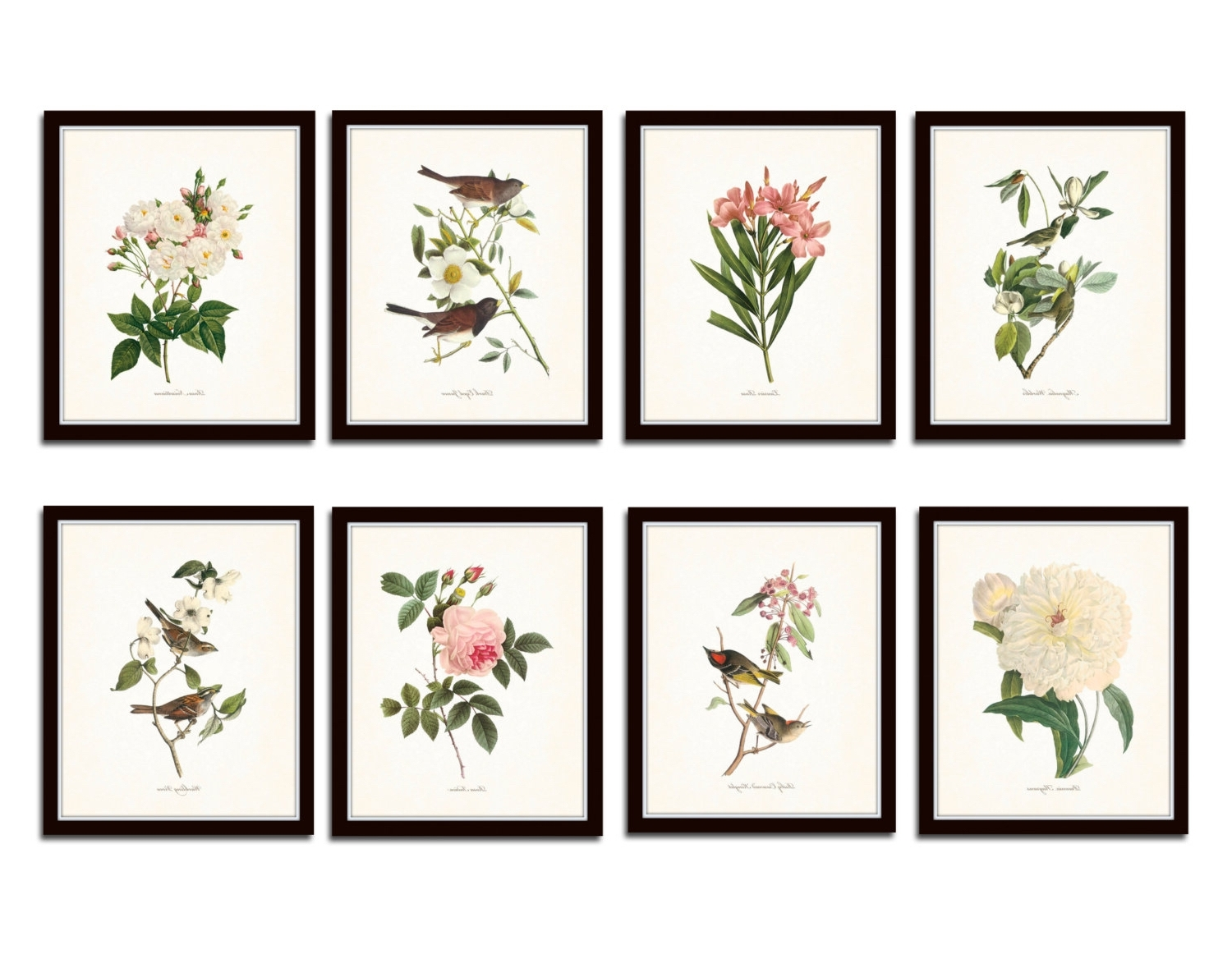 Featured Photo of Botanical Prints Etsy