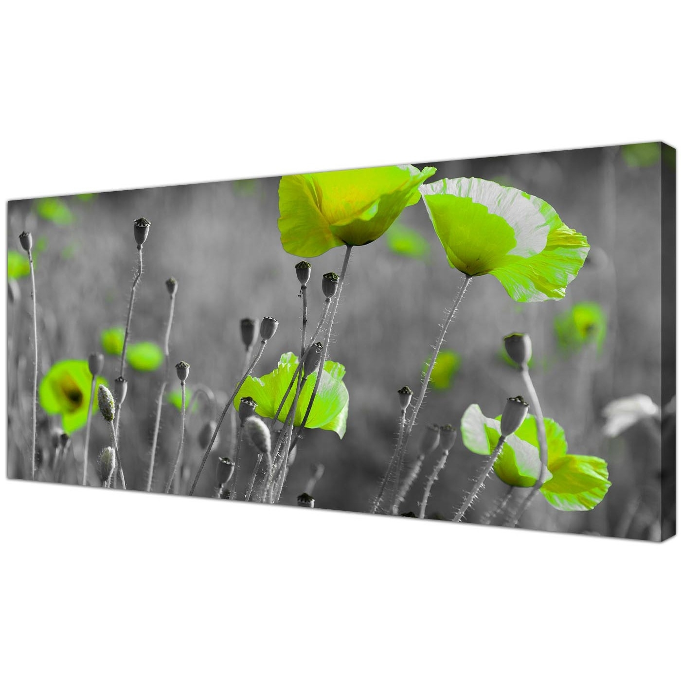 Famous Cheap Black And White Canvas Wall Art Of Green Poppies In Large Green Wall Art (View 3 of 15)