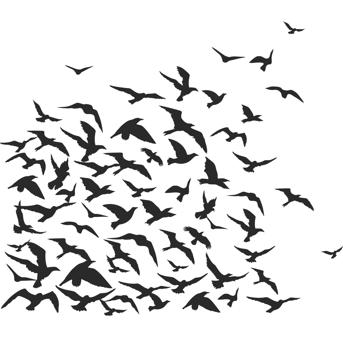 Famous Flock Of Birds Animals Wall Art Decal Wall Stickers Transfers Throughout Flock Of Birds Metal Wall Art (View 4 of 15)