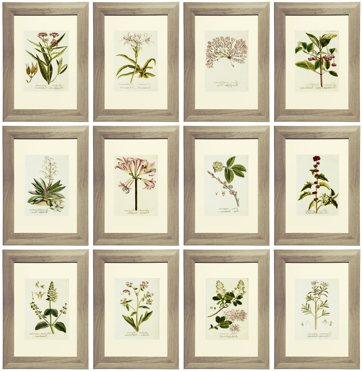 Fashionable Botanical Metal Wall Art Within 21 Free Lavender Botanical Printables (View 12 of 15)