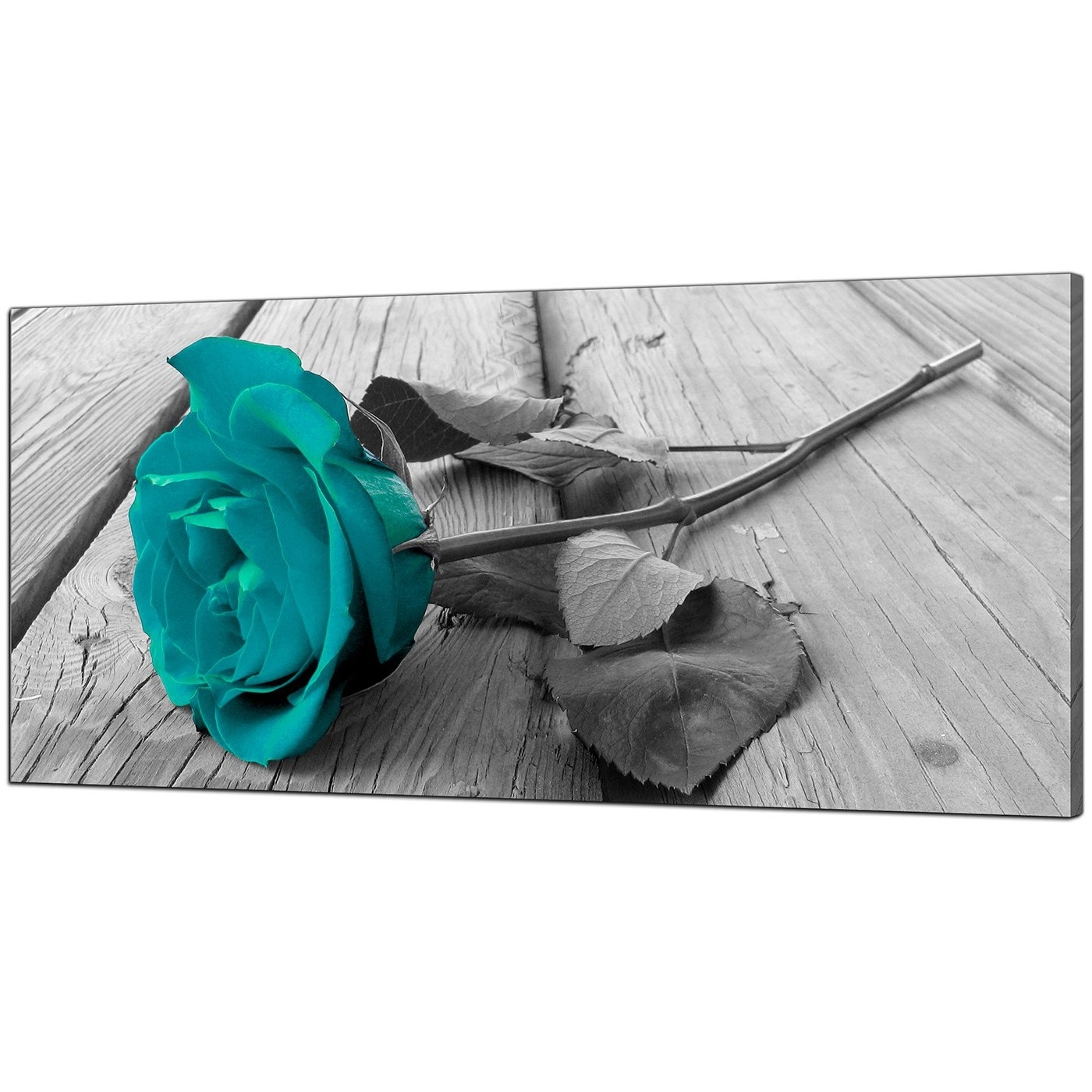 Fashionable Modern Black And White Canvas Wall Art Of A Teal Rose Flower In Teal Wall Art Uk (View 4 of 15)