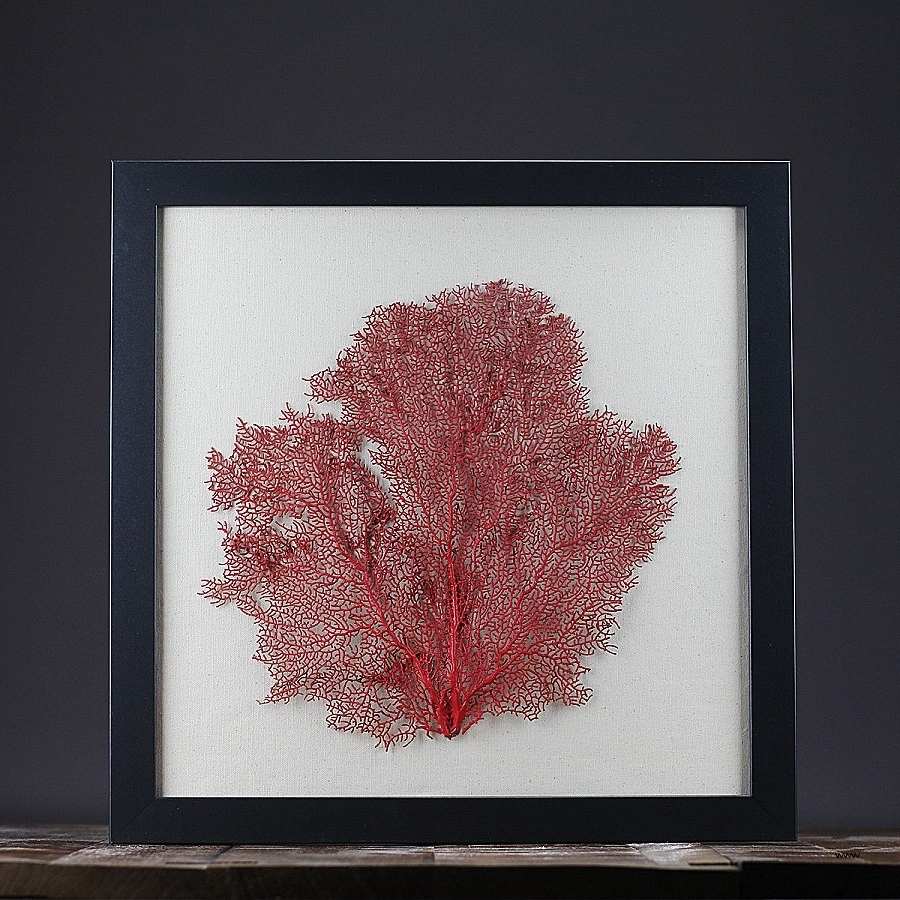 Fashionable Wall Art Awesome Sea Fan Wall Art High Resolution Wallpaper Images Throughout Sea Fan Wall Art (View 10 of 15)