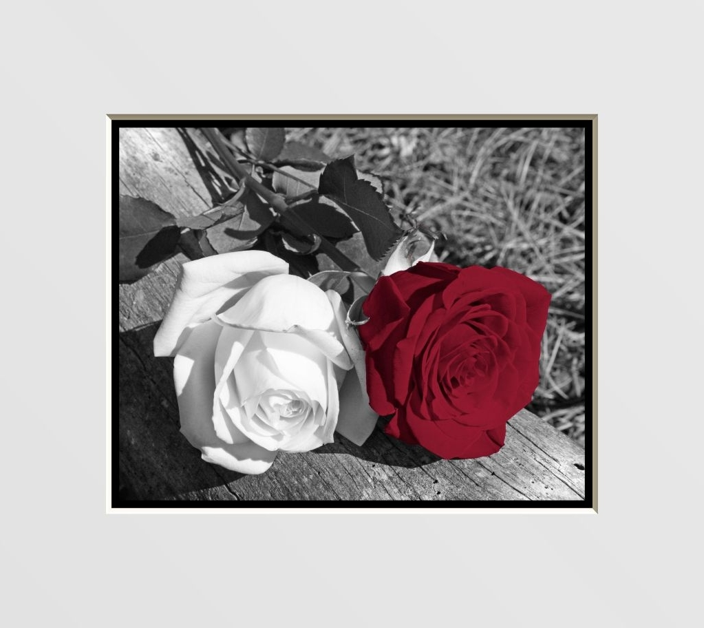 Favorite Red Rose Wall Art With Regard To Black & White Red Rose Flowers Interior Home Decor Wall Art Matted (View 5 of 15)