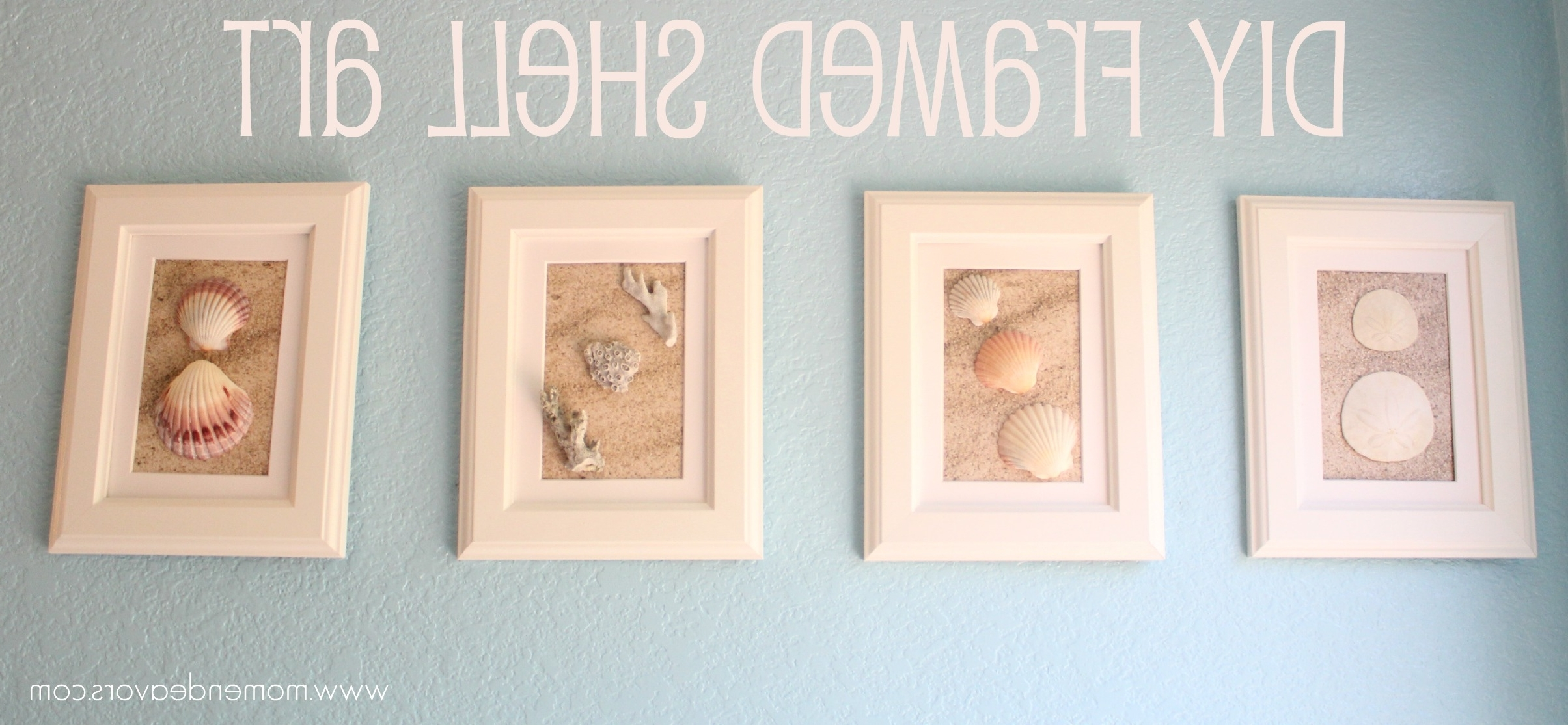 Favorite Sand Dollar Wall Art Intended For Diy Framed Shell Art (View 13 of 15)