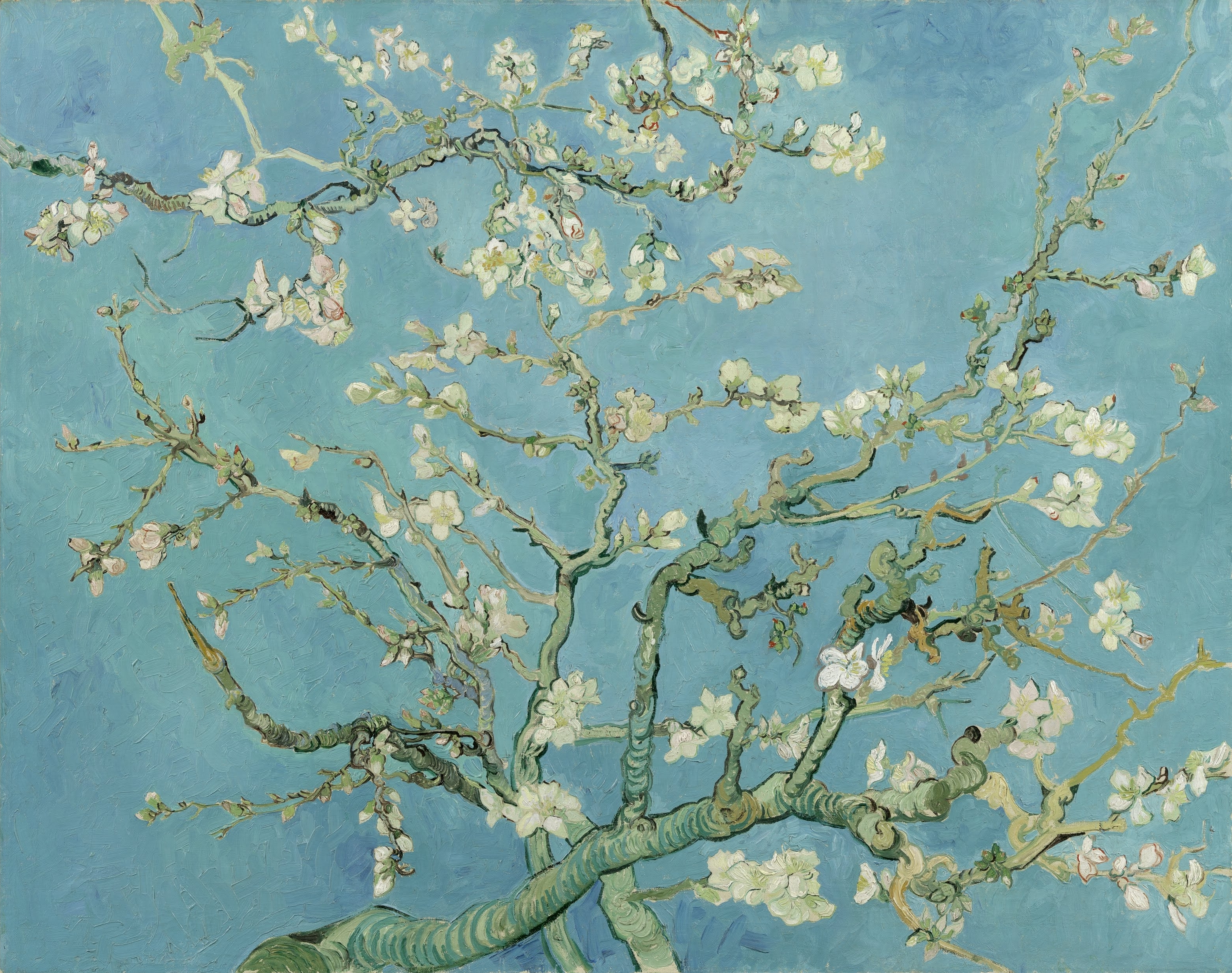 File:vincent Van Gogh – Almond Blossom – Google Art Project In Widely Used Almond Blossoms Vincent Van Gogh Wall Art (View 12 of 15)