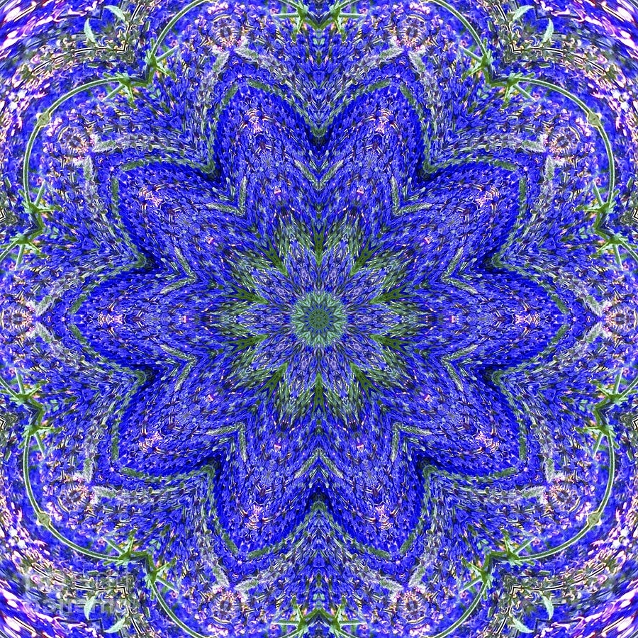 Kaleidoscope Wall Art In Most Recently Released Blue Purple Lavender Floral Kaleidoscope Wall Art Print Photograph (Gallery 3 of 15)
