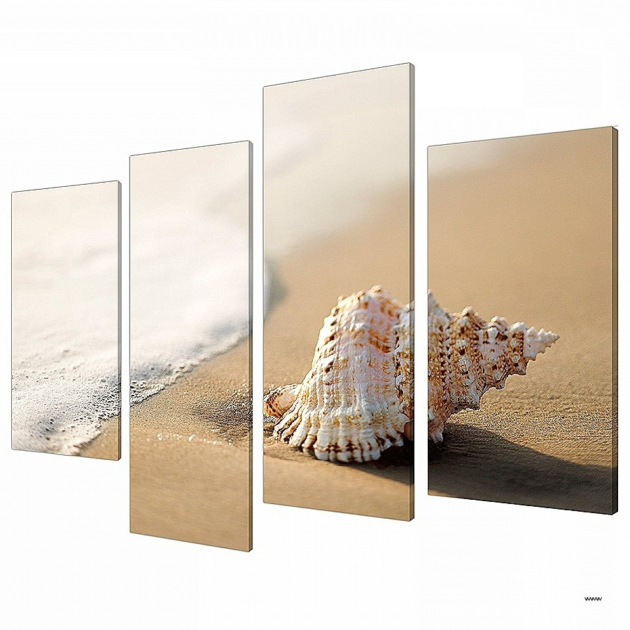 Latest Wall Art Inspirational Seashell Prints Wall Art Hi Res Wallpaper Throughout Seashell Prints Wall Art (View 6 of 15)