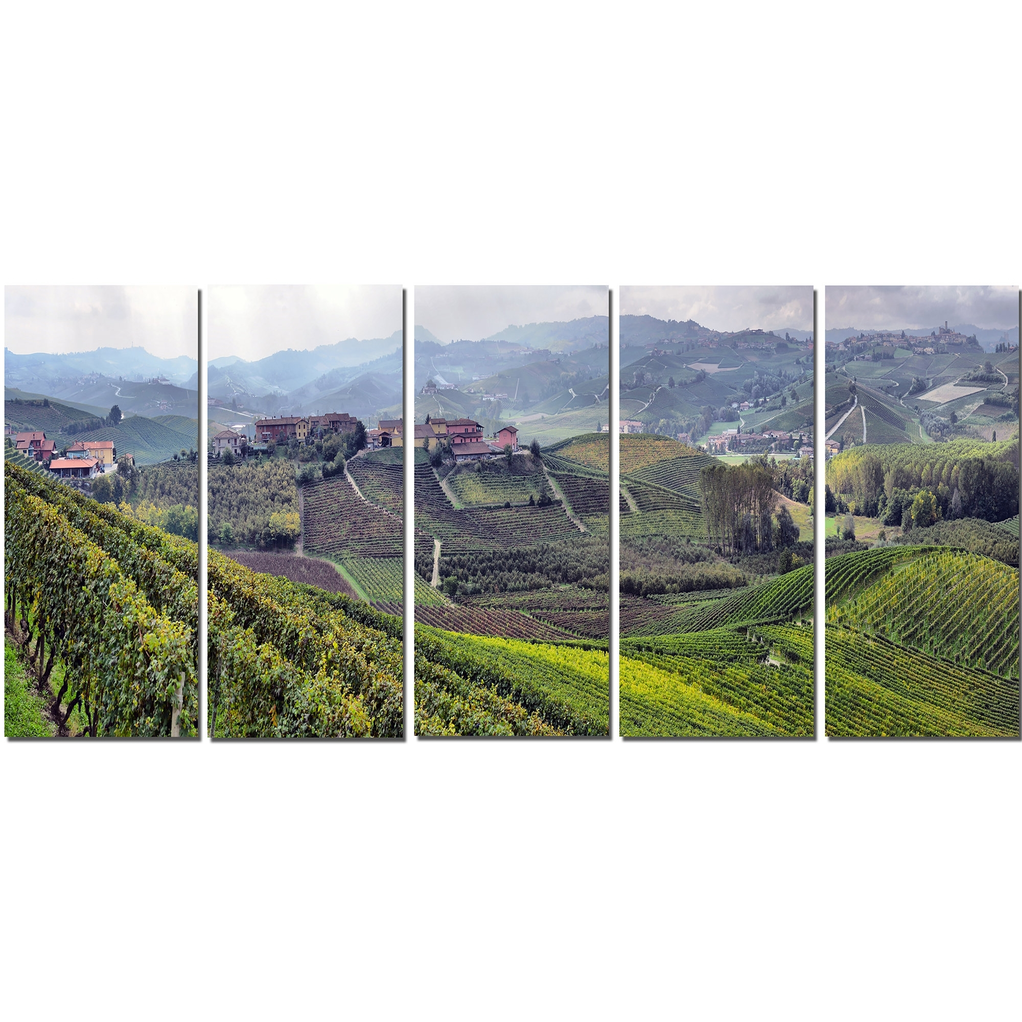 Most Current Designart Vineyards In Italy Panoramic 5 Piece Wall Art On Wrapped Regarding Vineyard Wall Art (View 5 of 15)