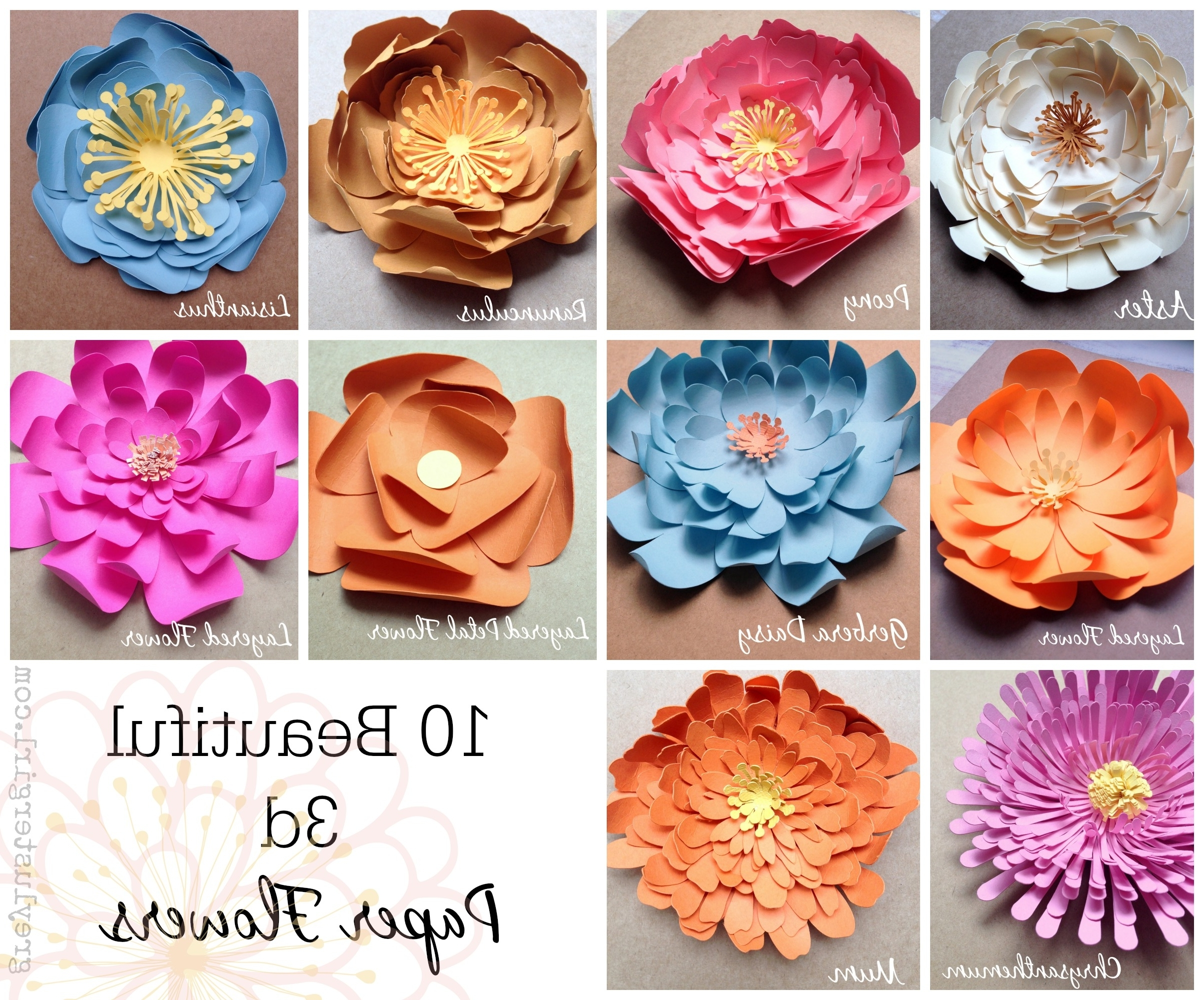 Most Recent Diy 3d Paper Wall Art For Paper Flowers Wall Art – (View 9 of 15)
