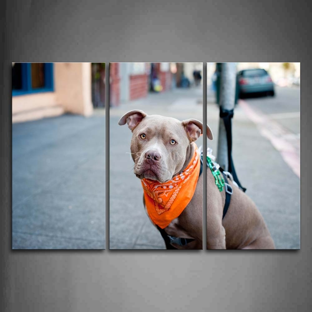 Most Recent Pitbull Wall Art Pertaining To 3 Piece Wall Art Painting Pit Bull Sit On Street Picture Print On (View 7 of 15)