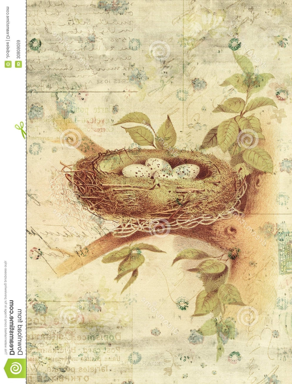 Most Recently Released Vintage Style Wall Art Throughout Nest And Bird Eggs Botanical Vintage Style Wall Art With Textured (View 12 of 15)