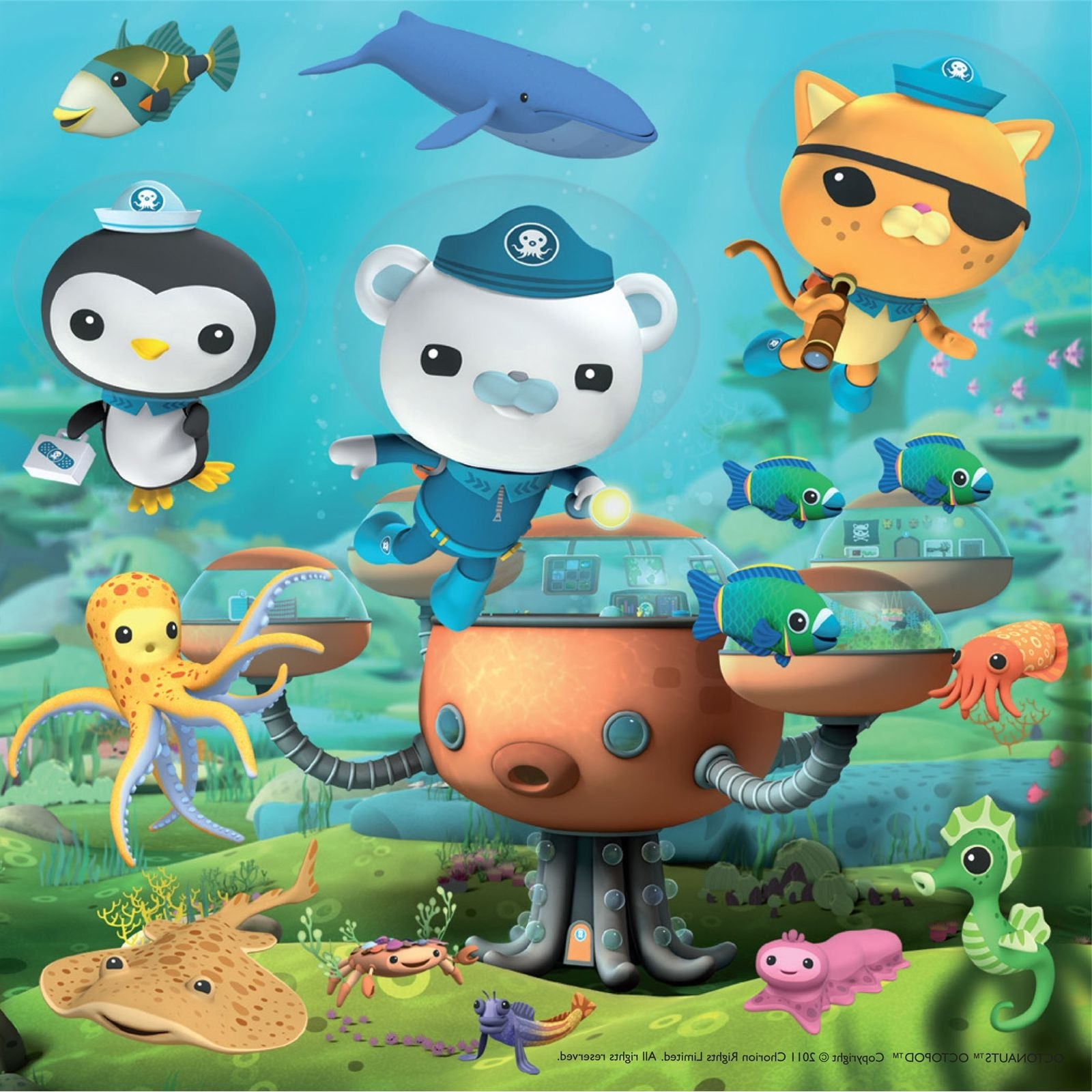 Octonauts Bday (View 3 of 15)