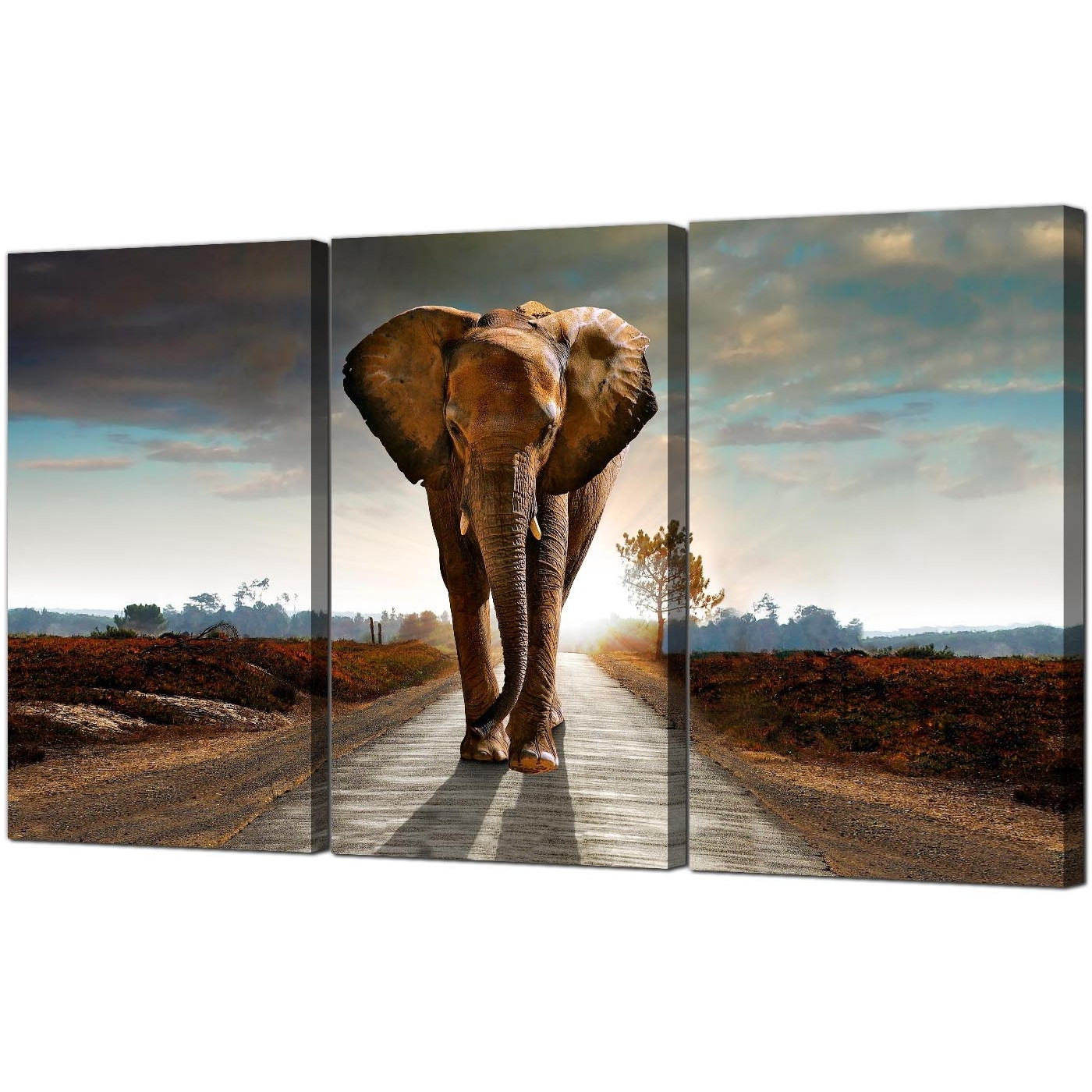 Popular Large African Elephant Canvas Prints 3 Part For Your Hallway Throughout Animal Canvas Wall Art (View 11 of 15)