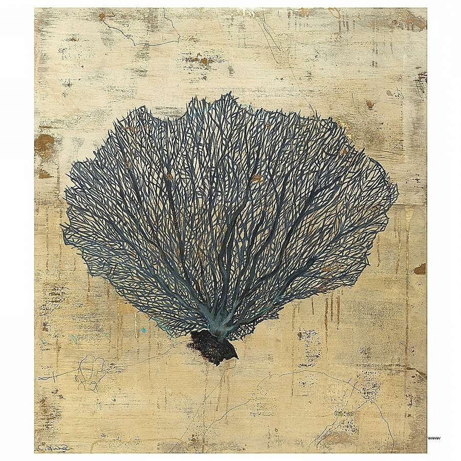 Popular Wall Art Awesome Sea Fan Wall Art High Resolution Wallpaper Images In Sea Fan Wall Art (View 15 of 15)