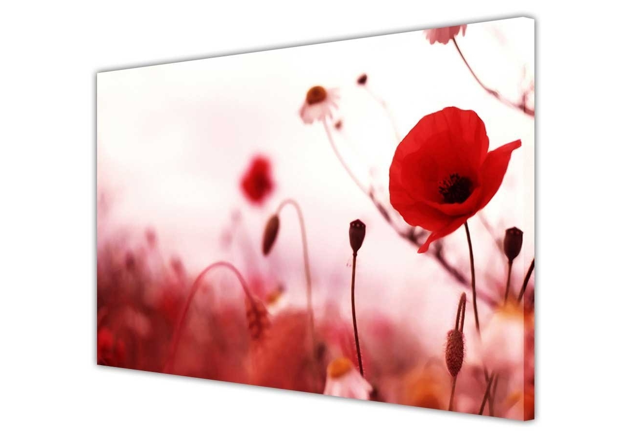Red Poppy Canvas Wall Art In Most Popular Canvas Wall Art Prints Red Poppy Flowers Flowers Romantic Photo (Gallery 13 of 15)