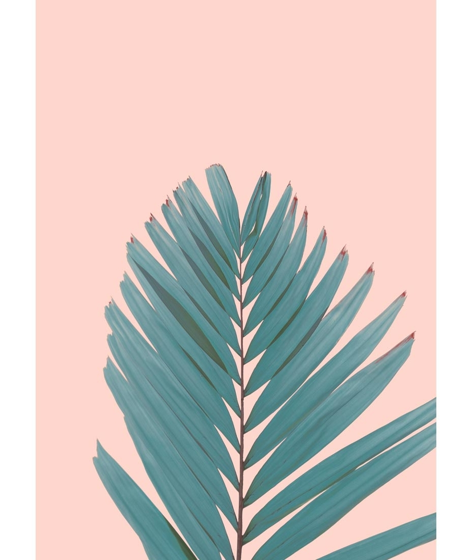 Shop Tropical & Contemporary Wall Art, Prints, Posters Within Most Popular Palm Leaf Wall Art (View 8 of 15)