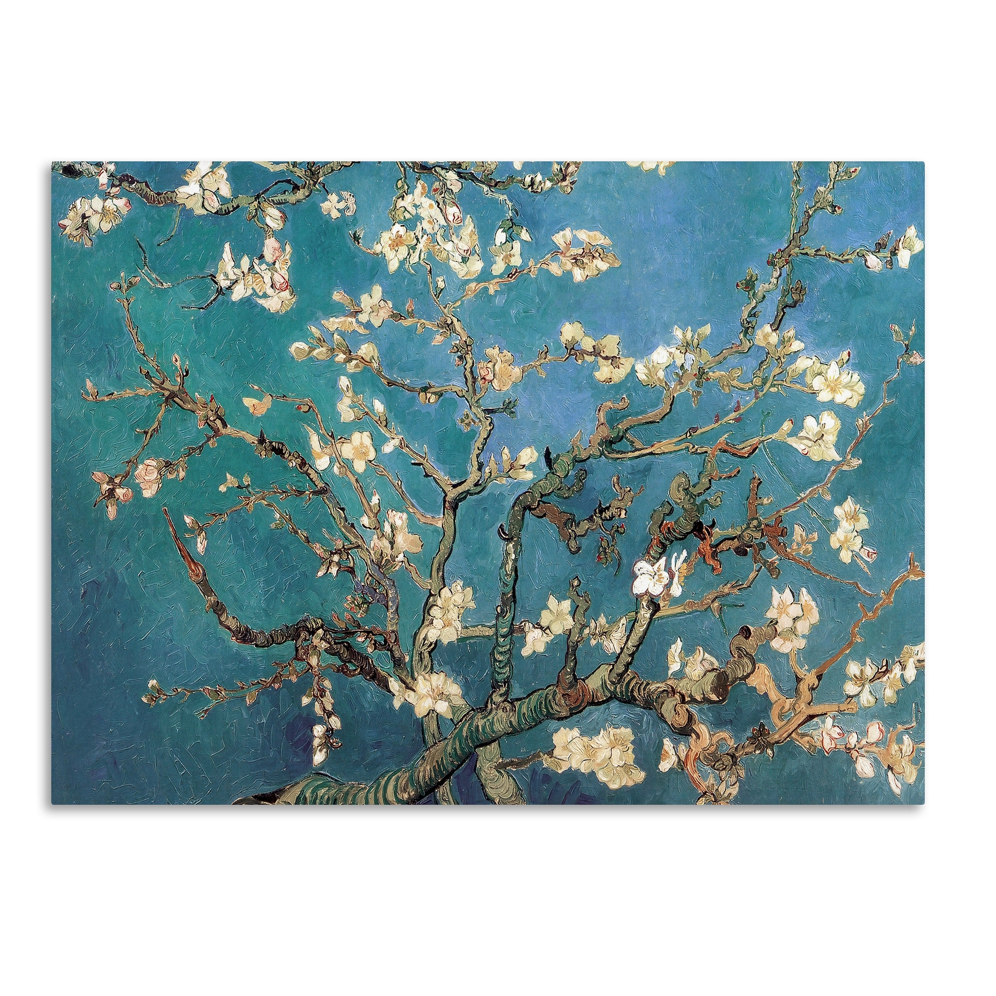 Trademark Art Almond Blossoms'vincent Van Gogh Framed On With Regard To Recent Almond Blossoms Vincent Van Gogh Wall Art (View 14 of 15)