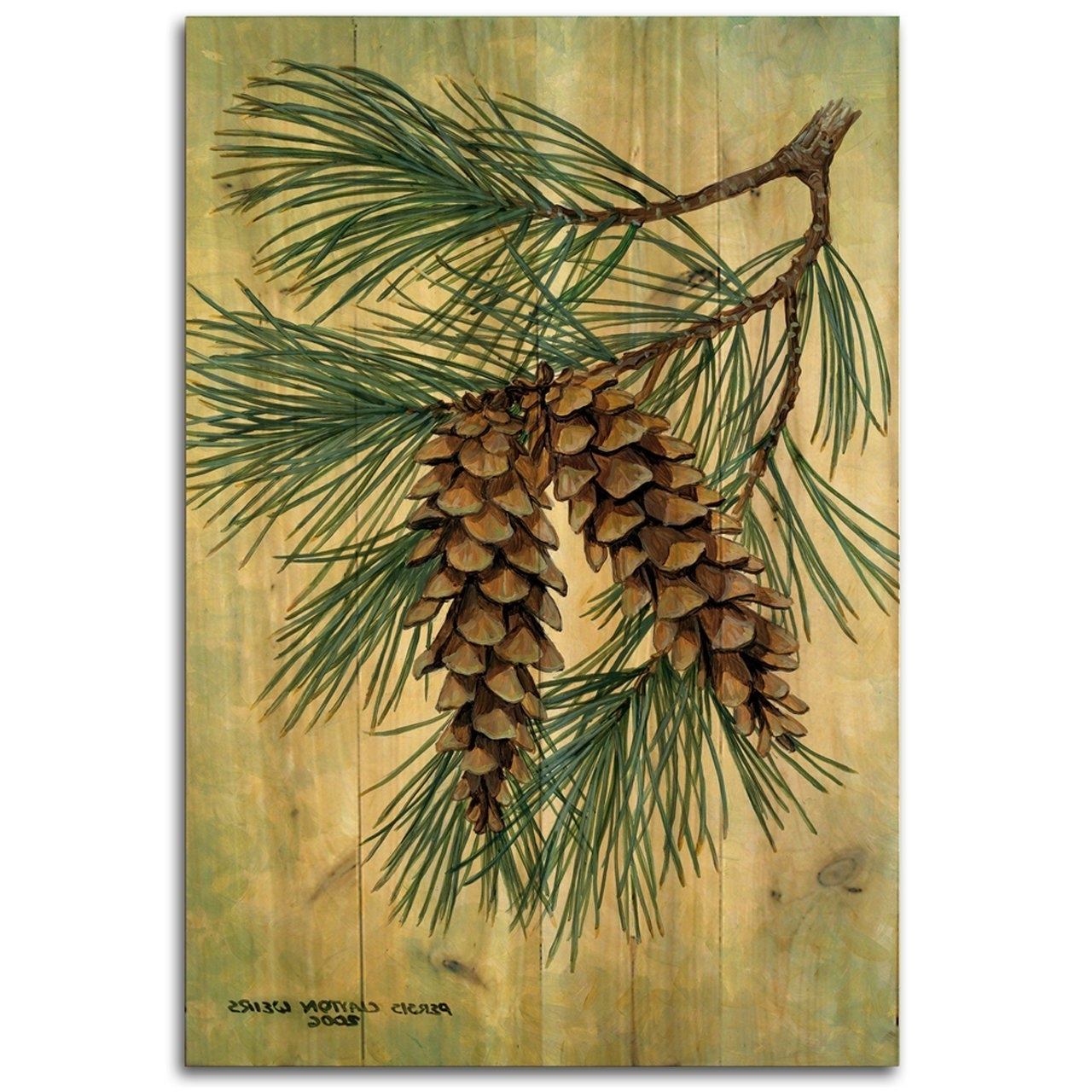 Trendy Amazon : Wgi Gallery 812 Pine Cone Wooden Wall Art : Garden In Pine Cone Wall Art (View 15 of 15)