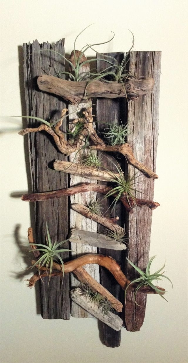 Trendy Danielle Pace Dyi Drift Wood And Air Plant Wall Art (View 14 of 15)