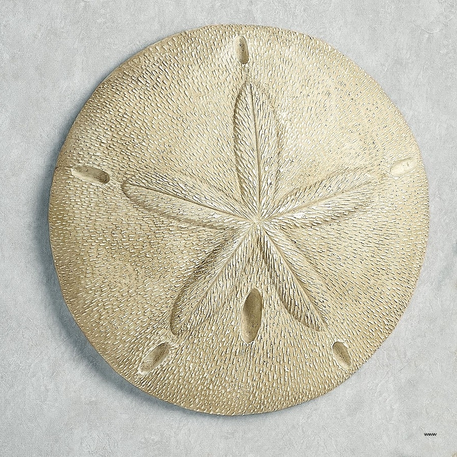 Trendy Sand Dollar Wall Art Pertaining To Wall Art Awesome Pine Tree Metal Wall Art High Resolution (View 6 of 15)