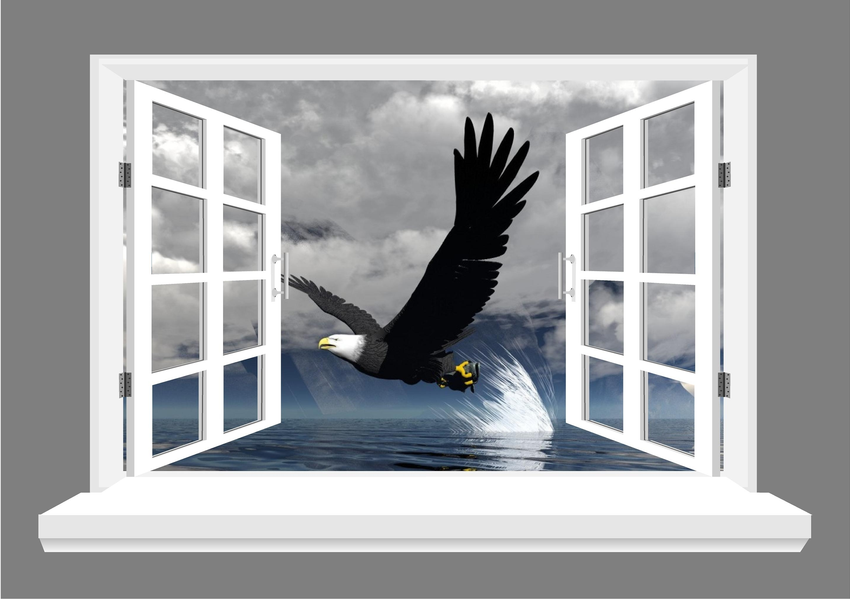 Vintage 3D Wall Art Regarding Most Recent Wall Art Design Ideas: Eagly Flying 3D Wall Art Bird Windows (View 10 of 15)