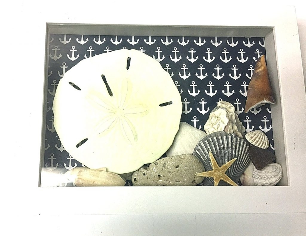 Wall Arts ~ Seashell Prints Wall Art Nautical Seashell Shadowbox With Current Seashell Prints Wall Art (View 13 of 15)