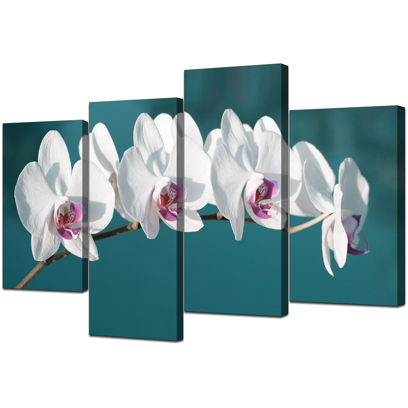 Well Liked Canvas Wall Art Of White Orchids On Teal Background For Your Office Within Teal Wall Art Uk (View 11 of 15)