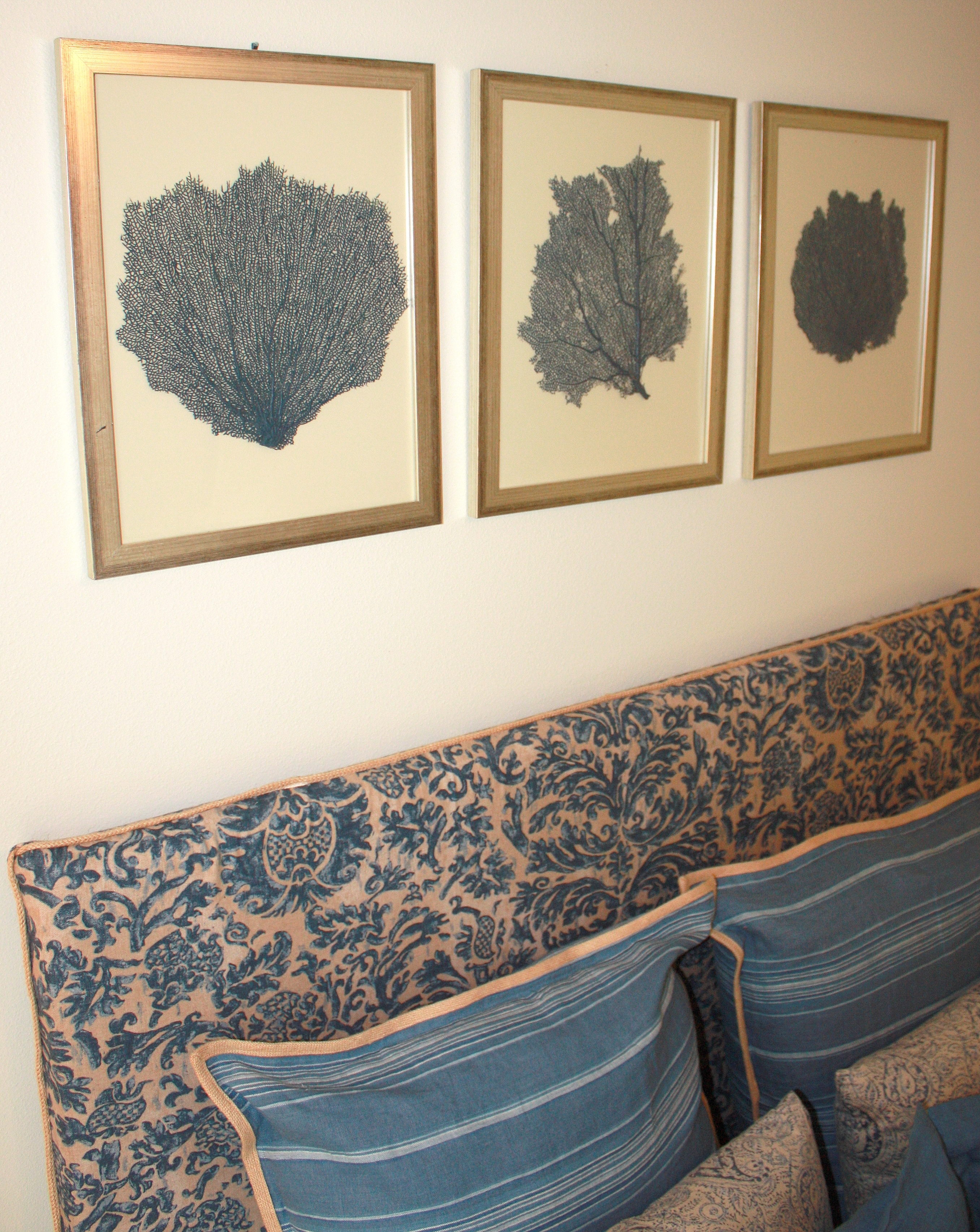 Well Liked Painted And Framed Sea Fan Collections With Regard To Sea Fan Wall Art (View 8 of 15)