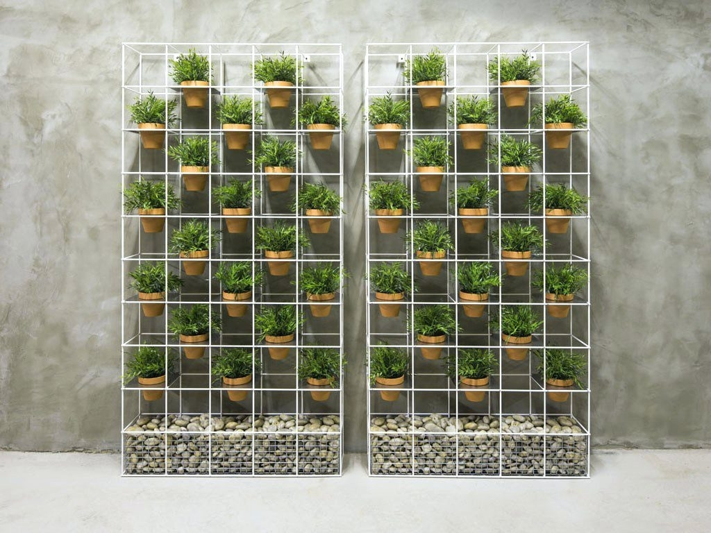 Well Liked Wall Arts ~ Live Fern And Moss Wall Art Live Picture Plant Walls Pertaining To Groupon Wall Art (View 14 of 15)
