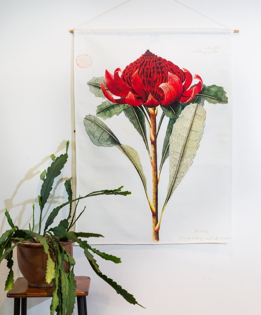 Widely Used Botanical Prints Etsy With Shop Australian Native Flower Wall Art From The Block (View 13 of 15)