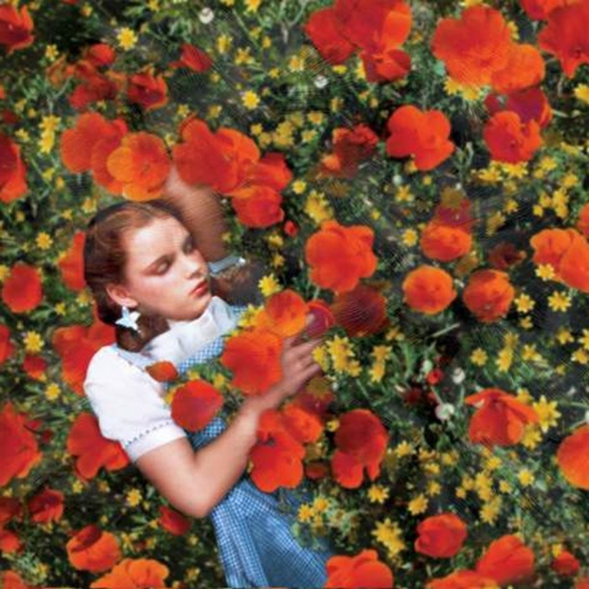 Widely Used Wizard Of Oz Wall Art Inside Inspiration: Dorothy Sleeps In The Poppy Field (Wizard Of Oz (View 12 of 15)