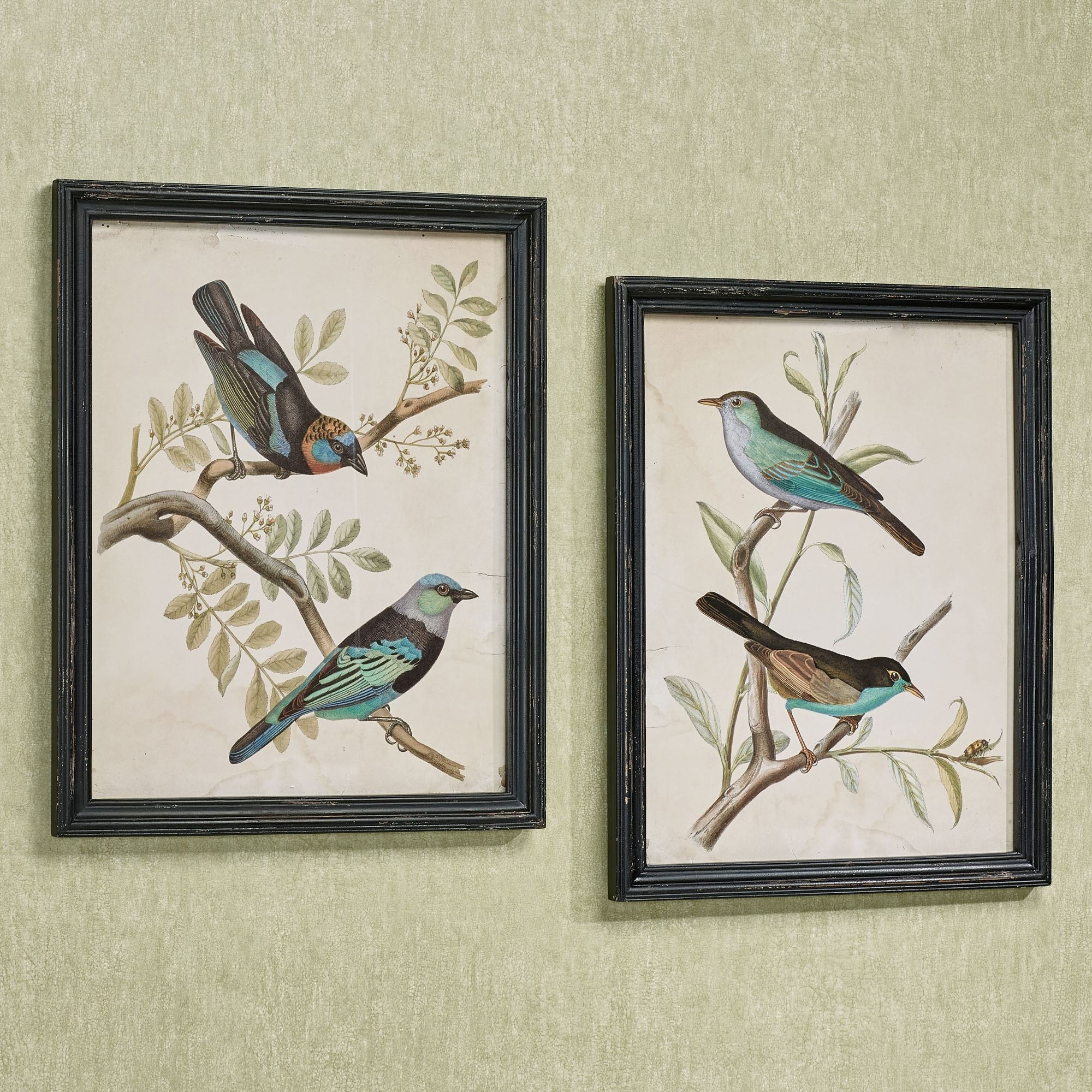 2017 Birds Framed Art Prints With Regard To Framed Art Prints (View 1 of 15)