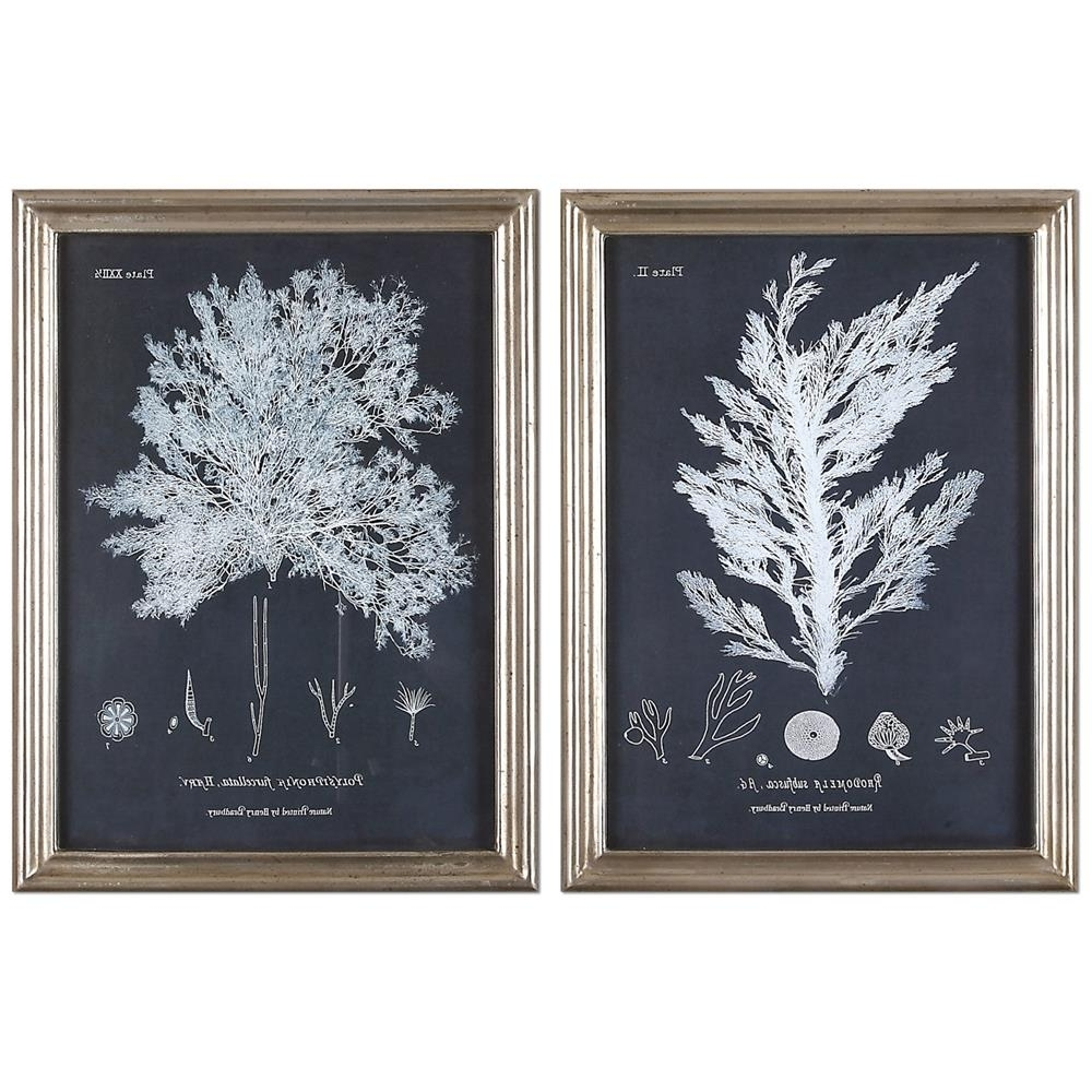 Anthozoa Coastal Beach Coral Botanical Silver Frame Prints – Pair With Well Liked Framed Coral Art Prints (View 3 of 15)