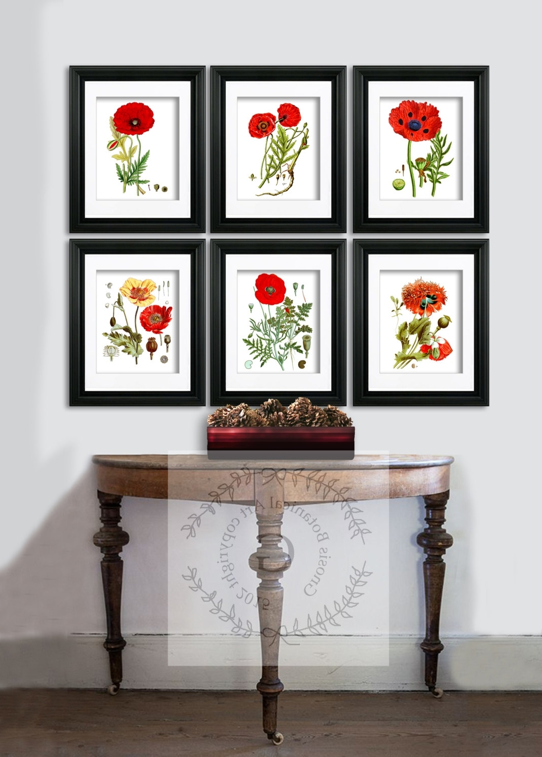 Featured Photo of Framed Botanical Art Prints