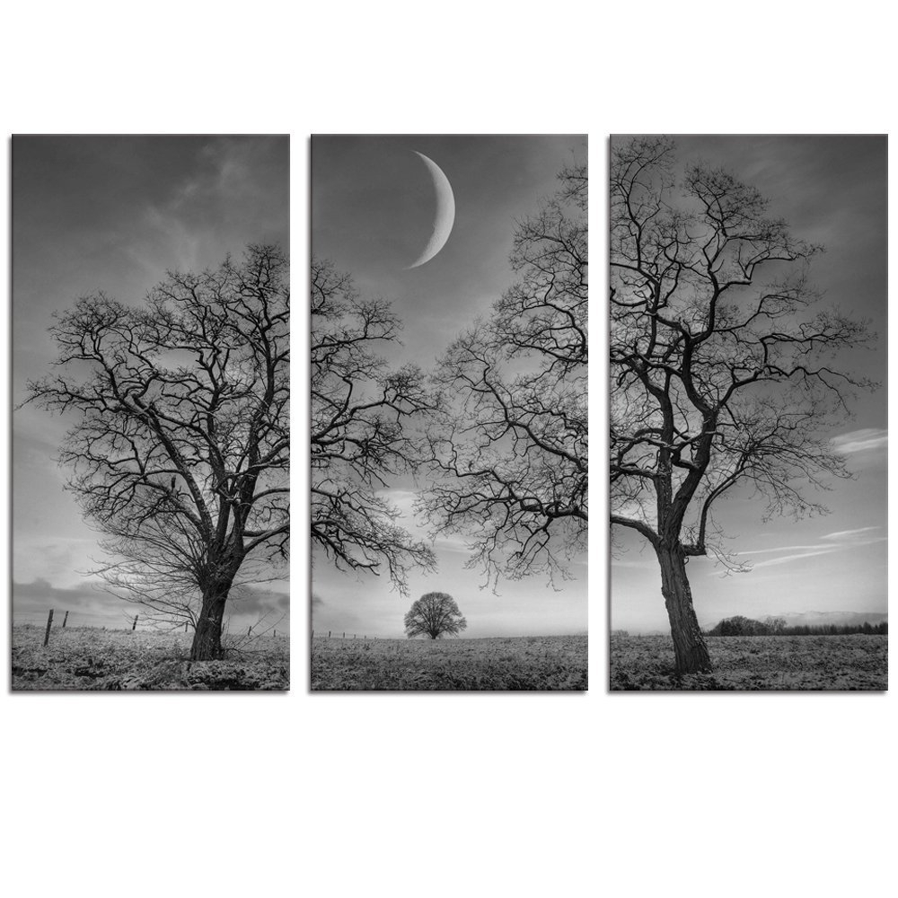 Black And White Canvas Wall Art Pertaining To Well Liked Amazon: Black And White Moon Canvas Wall Art Decor, Winter (View 3 of 15)